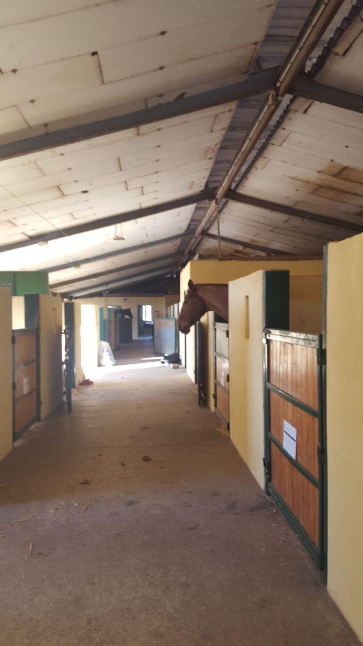 Vaucluse centre questre ecuries habitations clic equestre - Hangar a vendre vaucluse ...